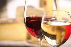 tipy vina
