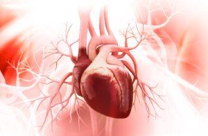 Сердечно-сосудистая патология
